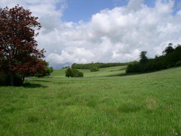 Land at Home Farm.jpg-pwrt2
