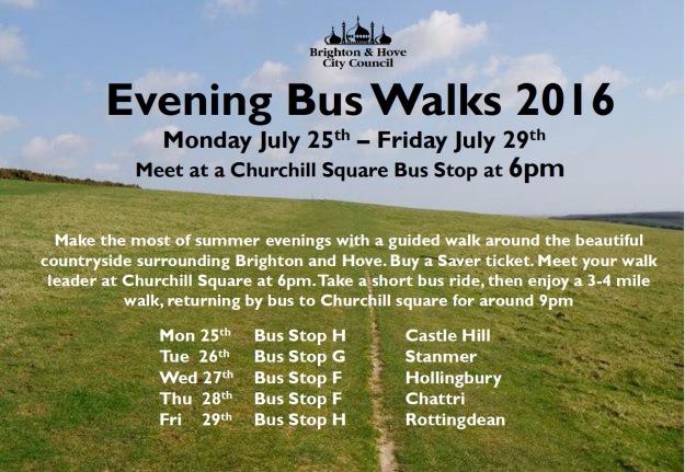 evening bus walks