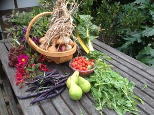 our-harvest-2016-l